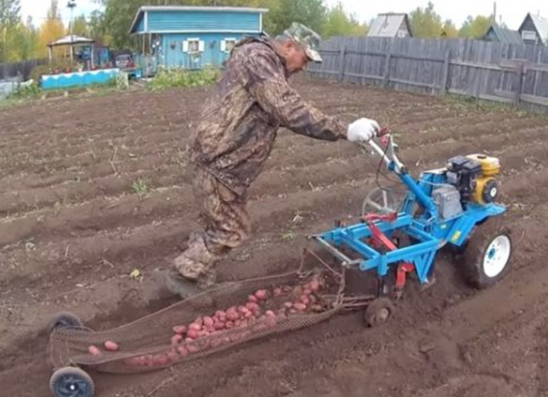 Дачник изобрел картофелекопалку