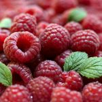 Как увеличить урожай малины в десять раз, и в два — смородины